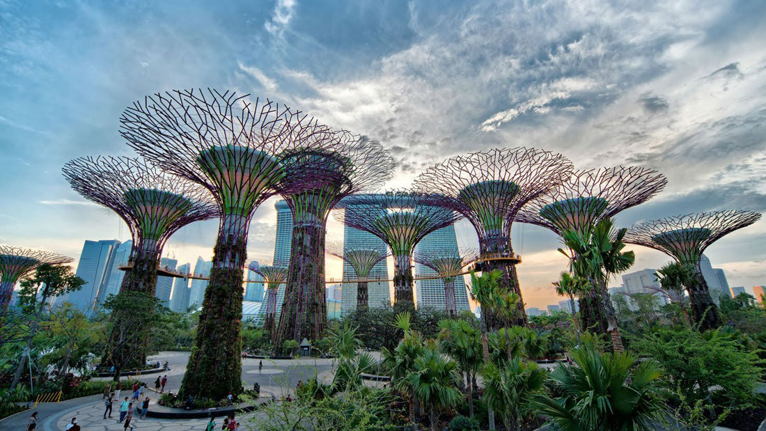 Stunning Gardens by the Bay in Singapore