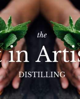 Let's take a look at how artisan distilleries have transformed the world of alcoholic drinks. Here's the art of artisan distilling.