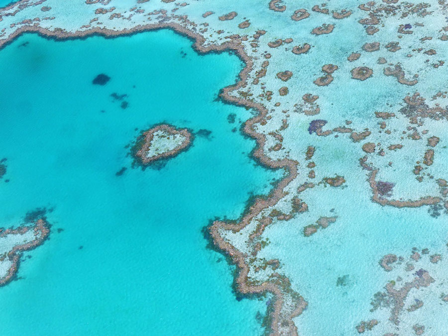 The Great Barrier Reef is one of the breathtaking places in Australia and consists of over 3.000 individual reef systems and tropical islands